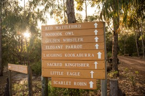 chalet signs