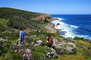 Wilyabprup cliffs