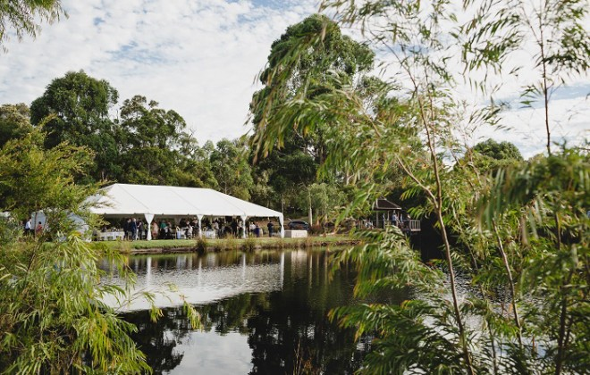 Day Time Wedding at Forest Rise