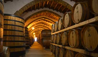 10 Of The Most Popular Wineries in Margaret River