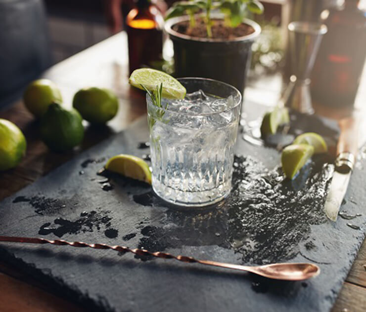 What is Giniversity?